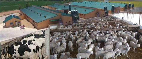 La Conselleria de Agricultura plantea homogeneizar la normat