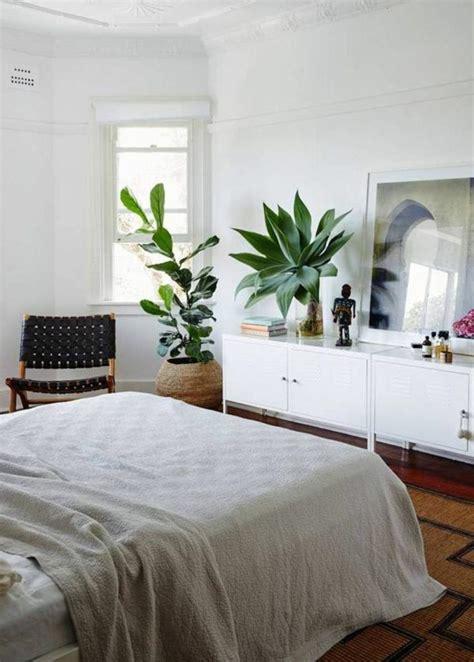 La décoration d intérieur avec de grandes plantes d intérieur