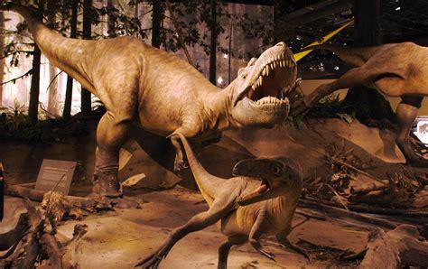 La Era de los Dinosaurios: nueva edición   Mito | Revista ...