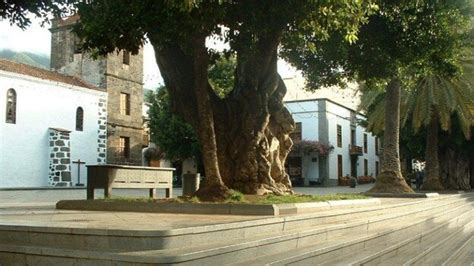 La Escuela de Música de La Palma celebra su tradicional ...
