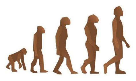 La evolución de la teoría de la evolución | La Rioja