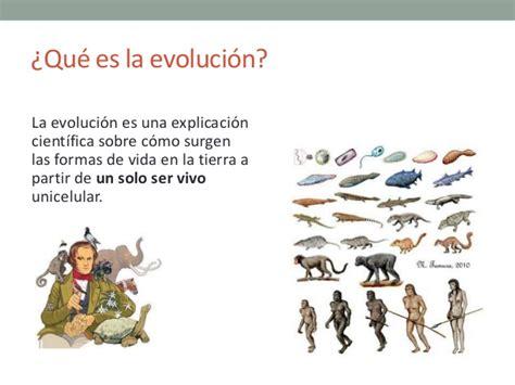 La evolución de los hominidos