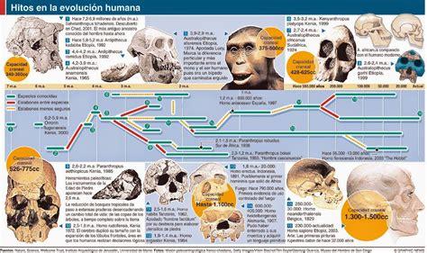 La Evolución Humana | Evolución humana, Historia de la ...