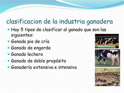 La ganadería en el mundo