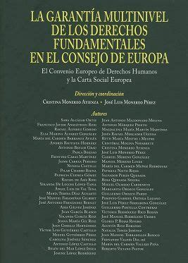La garantía multinivel de los Derechos fundamentales en el ...