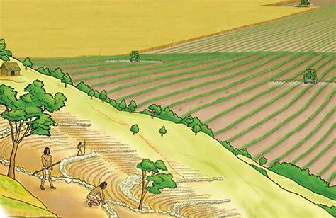 La historia de la agricultura en infografía ...