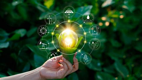 La importancia de la sostenibilidad para una empresa ...