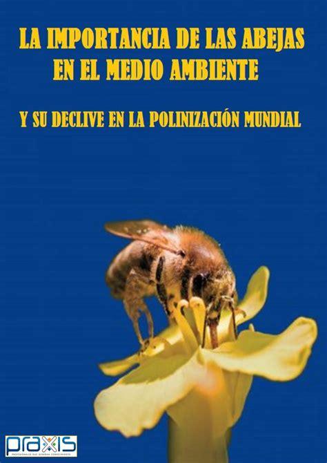 La importancia de las abejas en el medio ambiente y su ...