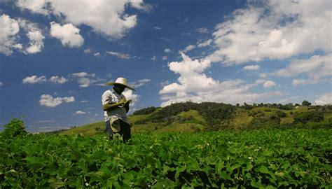 La Importancia Del Clima En La Agricultura Y Sus ...