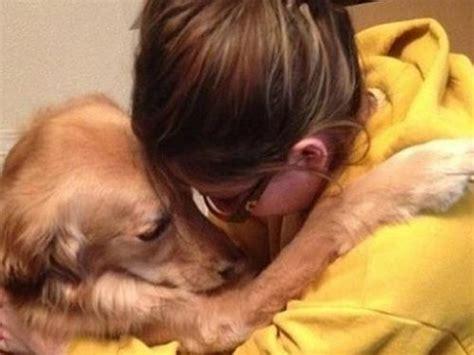 La intuición de los perros y los sentimientos humanos ...