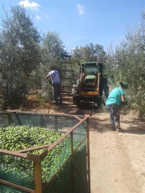 La Junta consensúa con el sector agrario una normativa ...