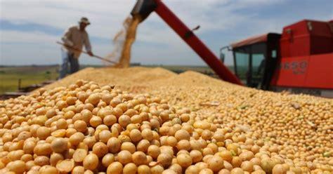 La Nación / Proyectan más producción y exportación de la soja