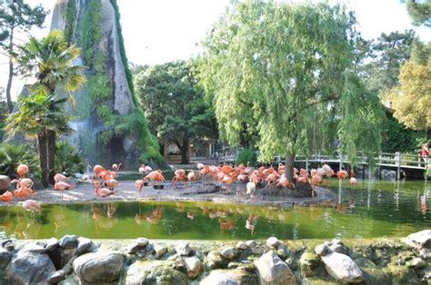 La Palmyre Zoo  La Palmyre Les Mathes, France : Hours ...