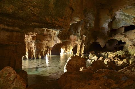 La Reserva Marina del Cap de Sant Antoni   Enjoy Xàbia