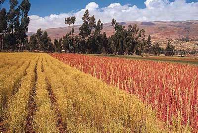 La Rioja. Agricultura destina 15.000 euros en ayudas a las ...