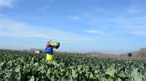 La Rioja bonificará los intereses de préstamos a titulares ...
