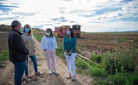 La Rioja estudia ayudas al sector de la patata, entre ...