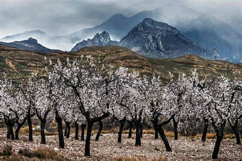 La Rioja más natural en 14 carteles   larioja.com