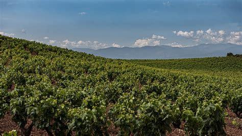 La Rioja: Un total de 106 viticultores y 62 productores ...