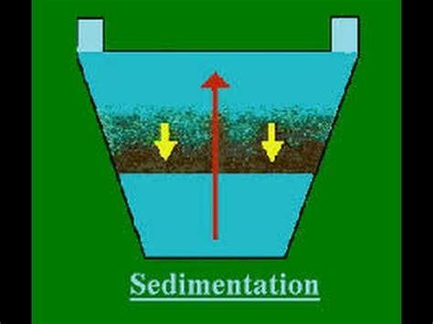 La Sedimentación Explicación   YouTube