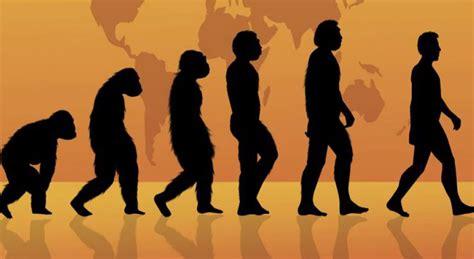 La Teoría de la Evolución   Jabad Argentina