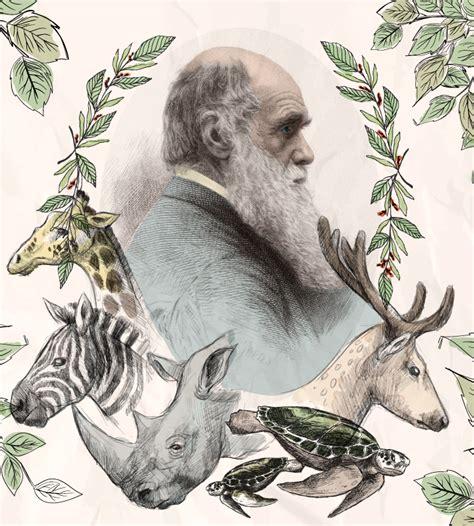 La teoría evolucionista