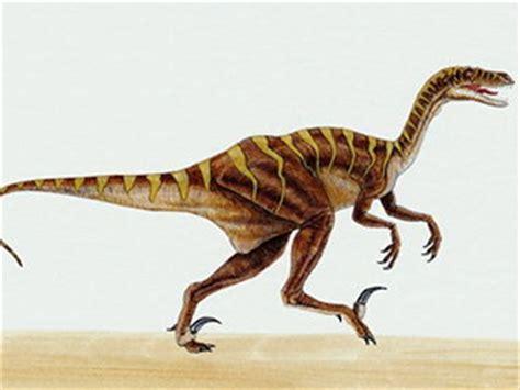 La última comida del Velociraptor