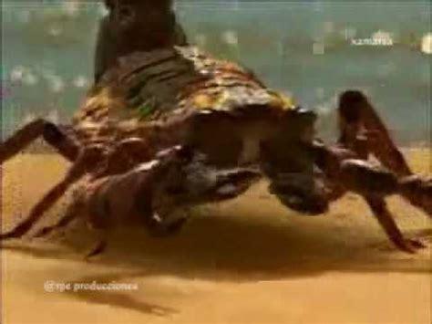 La vida antes de los dinosaurios 2/8   YouTube