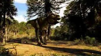 La Vida y Muerte de los Dinosaurios   Documental BBC   YouTube