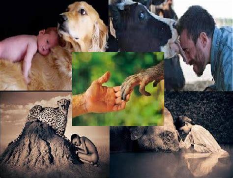 La Voz De Un Animal: 4/OCT   DIA MUNDIAL DE LOS ANIMALES