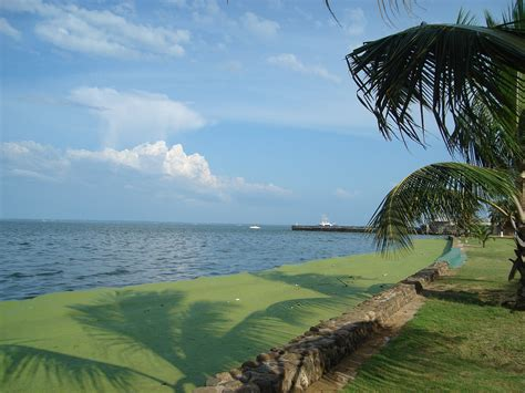 Lake Maracaibo Travel Guide, Facts & Picture