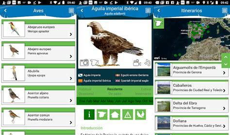 Las 5 mejores apps de Android para identificar pájaros y aves