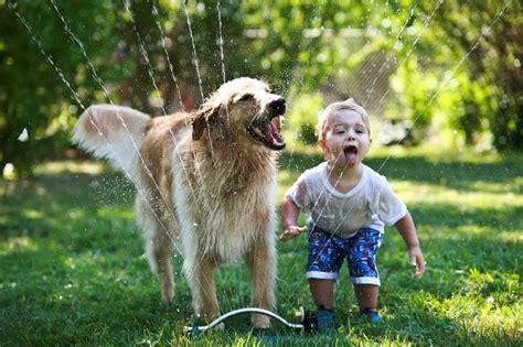Las 5 mejores mascotas para niños   Maternidadfacil