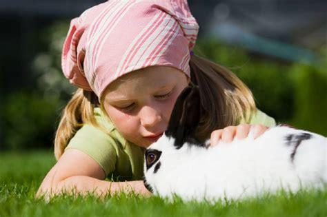 Las 5 mejores mascotas para niños