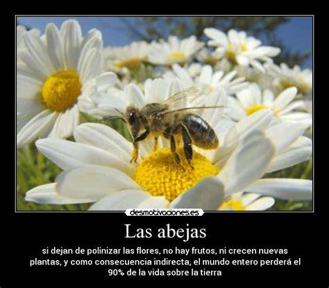 Las abejas | Desmotivaciones