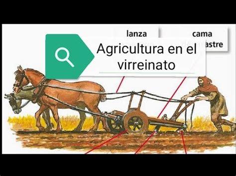 Las actividades económicas del virreinato agricultura ...