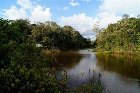 Las Áreas de Conservación Privada y su importancia para el ...