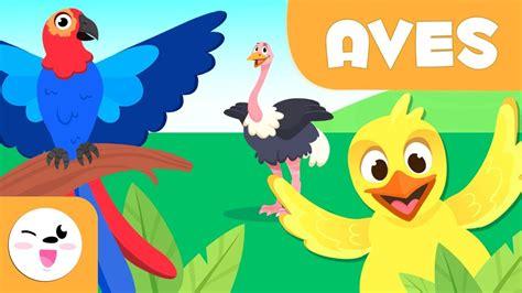 Las Aves para niños   Animales vertebrados   Ciencias ...