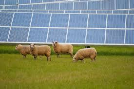 Las energías renovables en el Reino Unido