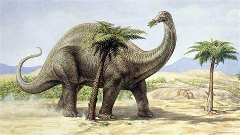 Las flatulencias de dinosaurios pudieron calentar el ...