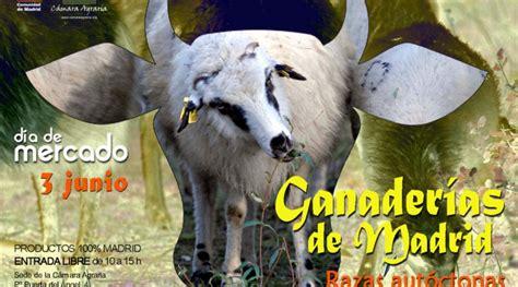 Las ganaderías de Madrid, protagonistas del Día de Mercado ...