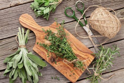 Las hierbas aromáticas y su magia   Cocina y Vino