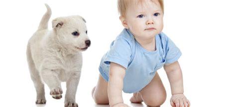 Las mejores mascotas para los niños