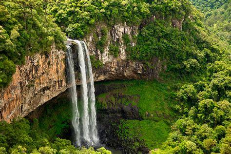 Las mejores selvas del mundo para perderse — Rock The ...