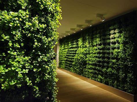 Las paredes vegetales aíslan mejor el ruido   Libertad Digital