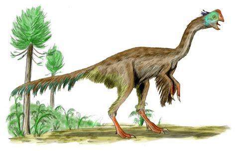 Las rarezas de algunos de los dinosaurios más extraños ...