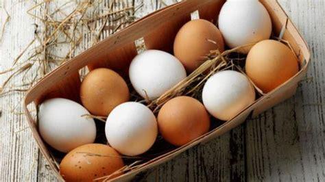 Las verdaderas diferencias entre los huevos blancos y de ...