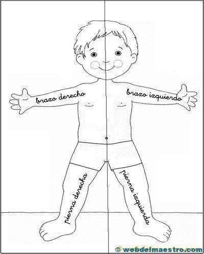 Lateralidad | Partes del cuerpo preescolar, Ejercicios de ...