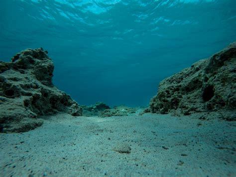 Leere Meeresgrund Mit Felsen Riff Und Seeigel Stockfoto ...
