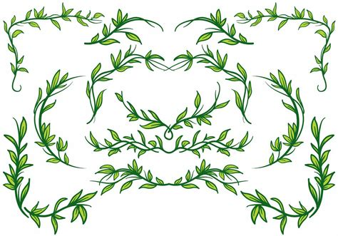 Liana Plant Border Vector   Download Free Vector Art ...